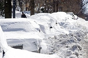 Snow Buried Cars