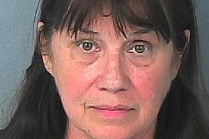 Florida Teacher's Mug Shots