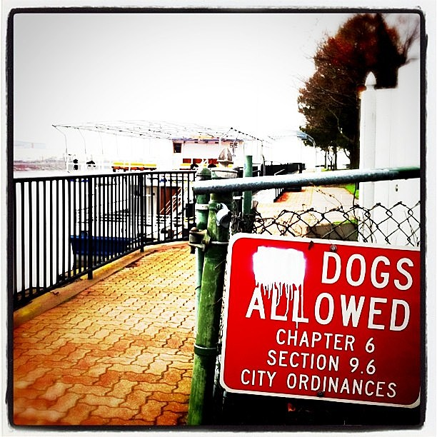 Times must really be tough seeing that the city can't afford new signs for regulation changes. (@hayryan, Instagram)